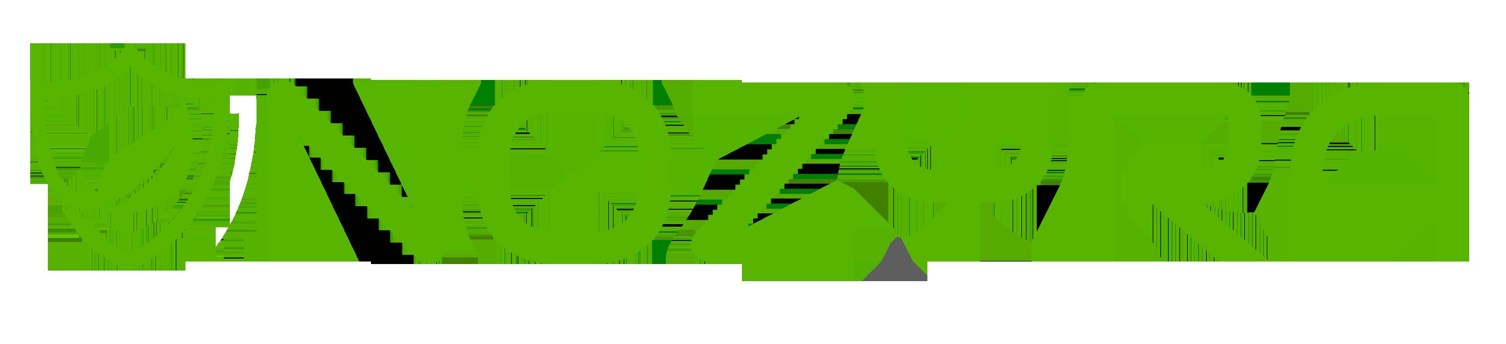 NOZYRA